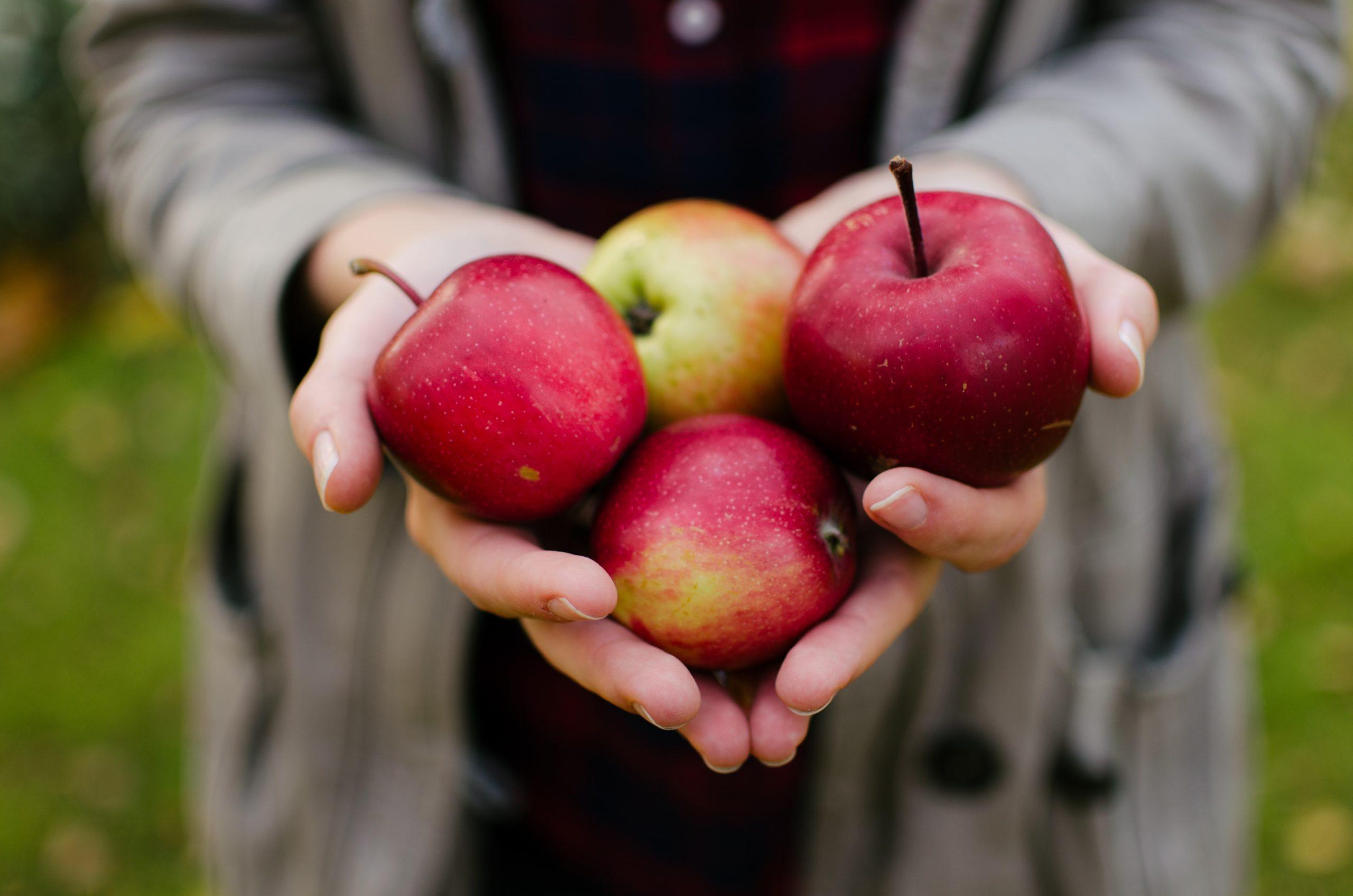 1 Jahr vegan – Mein Apfelkuchenrezept